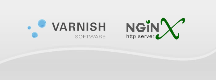 nginx varnish hosting web